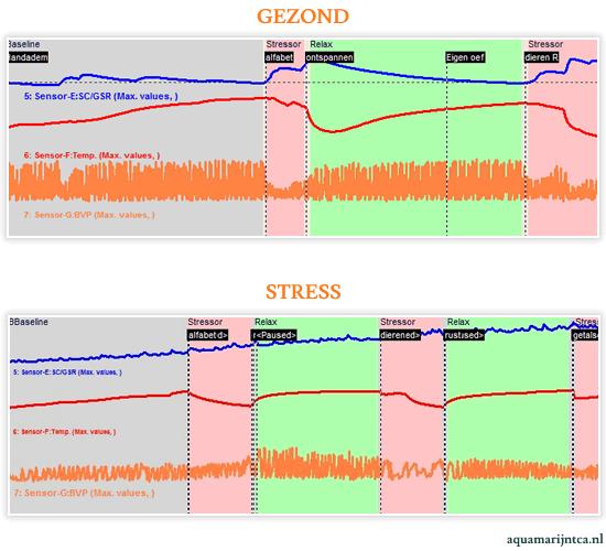 Metingen in grafieken van een stress en een gezond persoon.
