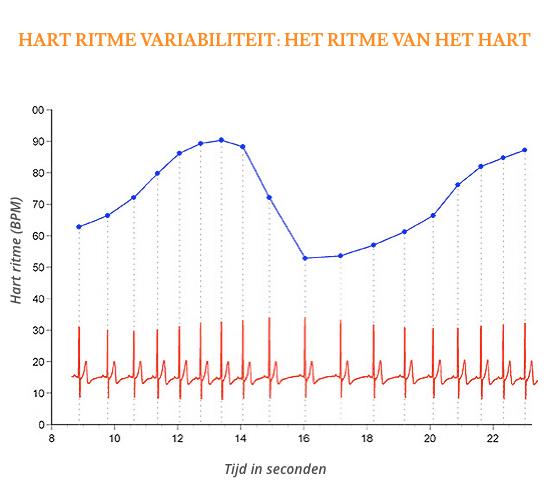 Grafiek van Hart Ritme Variabiliteit: het ritme van het hart